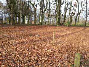 Begraven van asurn in urnenbos